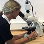 Das neue Leica-Mikroskop ist da